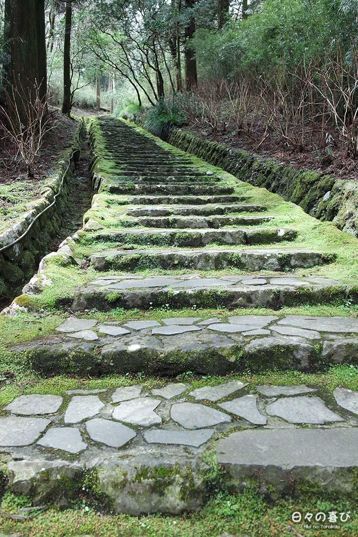 contre plongée escalier menant au parc onshihakone