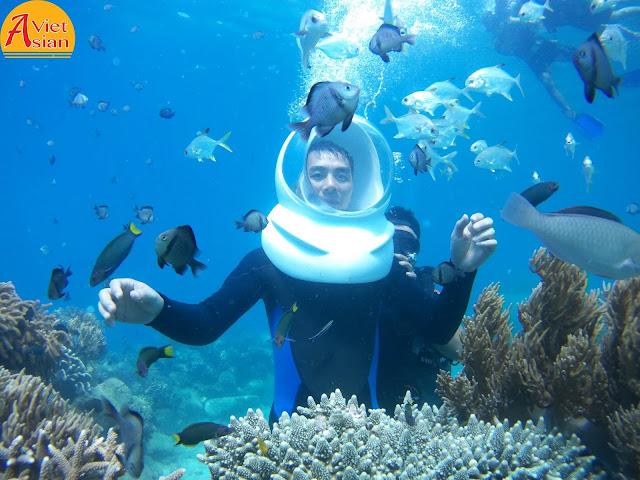 Tour Đi Bộ Dưới Biển 6