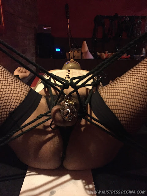 tied up slave with chastity belt
