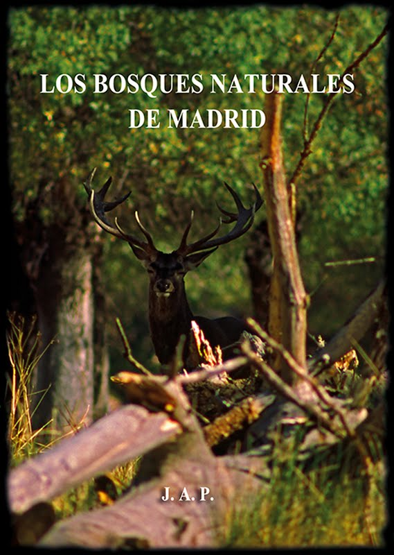 DVD. LOS BOSQUES NATURALES DE MADRID