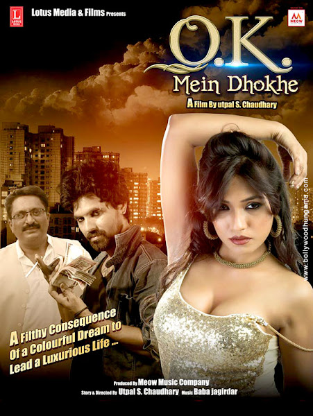 Ok Mein Dhokhe (2016) Movie Poster No. 2