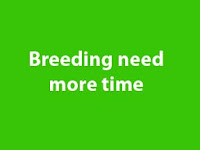 how to breed
