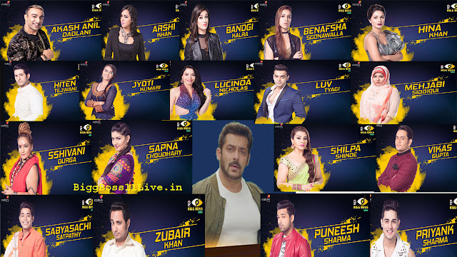 How to Vote for Favorite Contestant in Bigg Boss 11 from Any