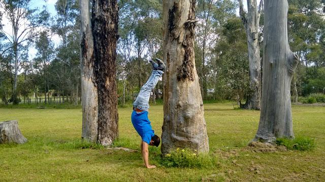 handstand - fitness - health