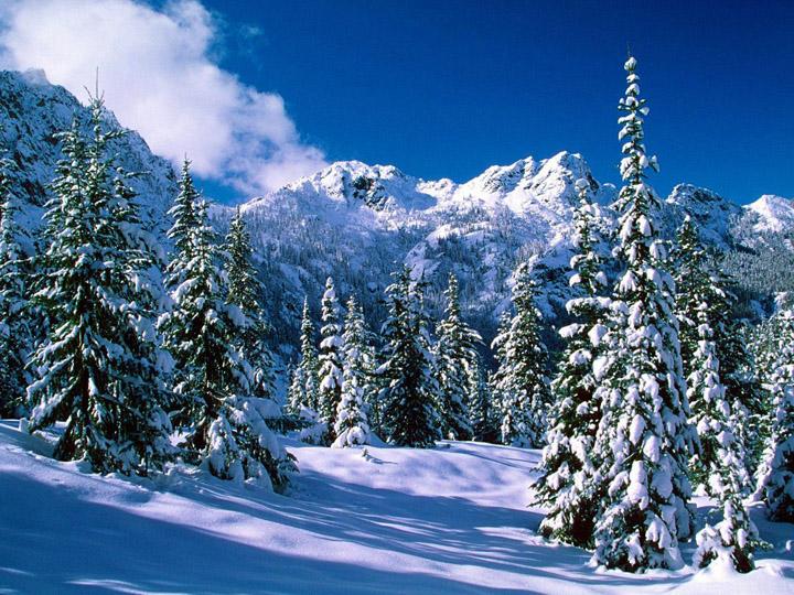 manzaralı kış resimleri
