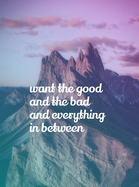 Want the good and the bad and everything between