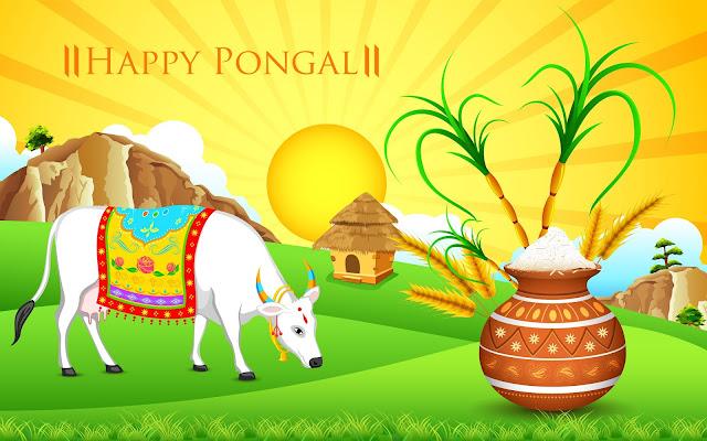 happy pongal 2019,happy pongal,pongal 2019,pongal,pongal festival,happy pongal 2018,2019 happy pongal,2019 pongal,pongal wishes,thai pongal 2019,pongal date 2019,thai pongal date 2019,pongal wishes 2019,2019 thai pongal,happy pongal 2019 date,happy pongal whatsapp video,happy pongal 2019 muggu,happy pongal whatsapp status,advance happy pongal 2019,2019 thai pongal date,happy pongal 2019 hd images