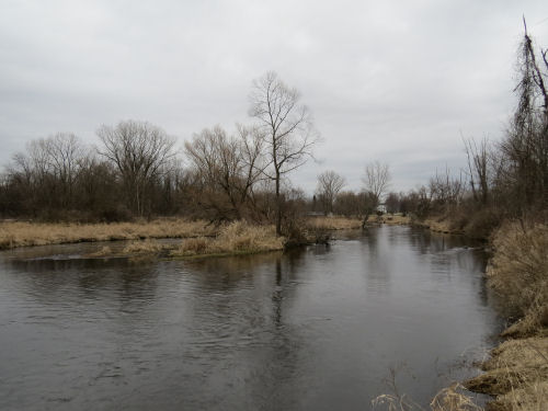 North Country Trail Homer MIchigan