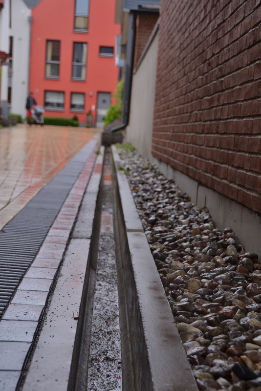 Sustainable Design Bioswales Canals And Drainage Oh My