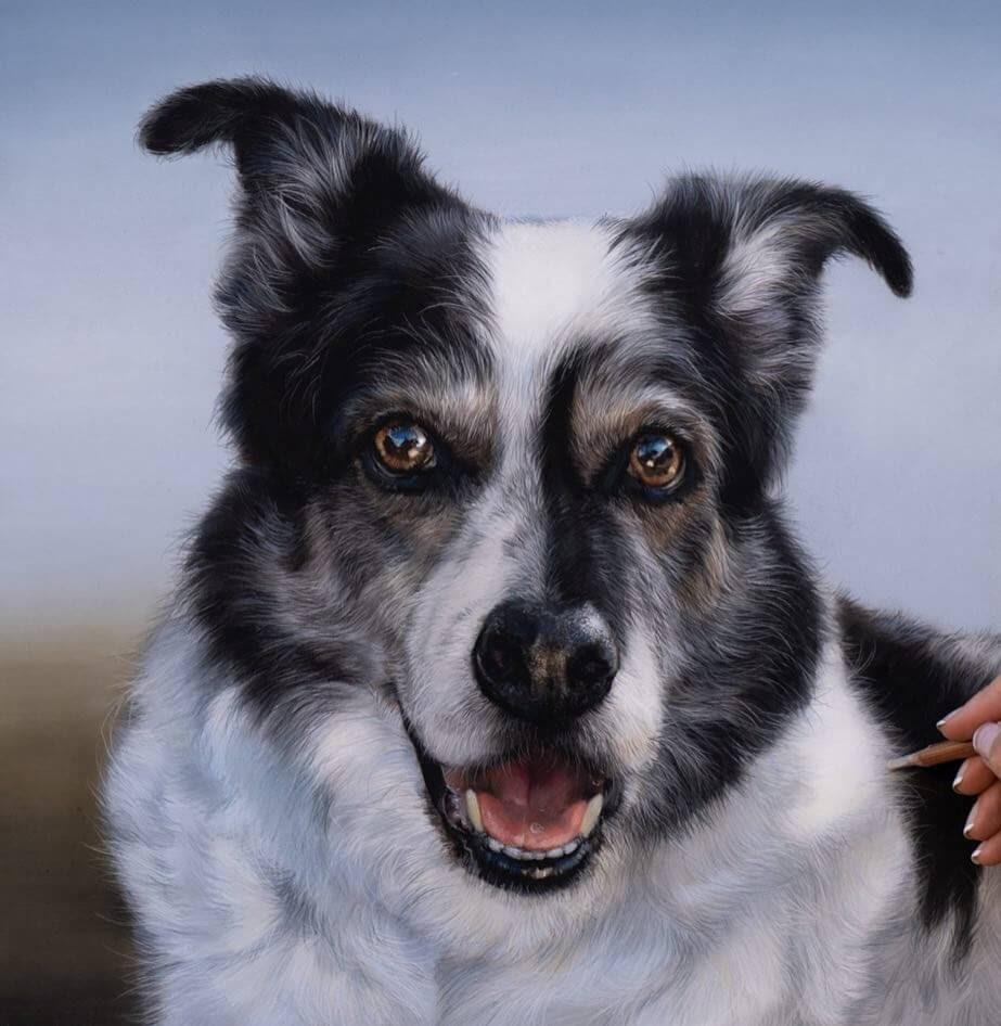 08-Dakota-Patricia-Otero-Cats-and-Dogs-Portrait-Artist-www-designstack-co