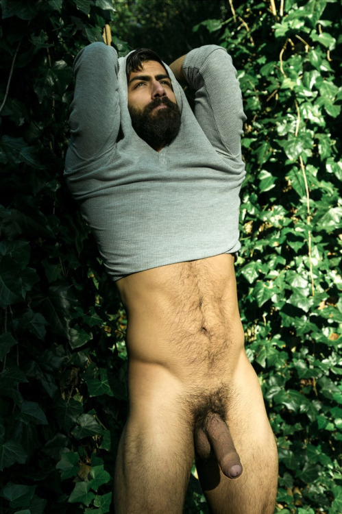 Hairy With Big Cock Blog