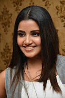 Anupama Parameswaran  Birthday Celebration Photos TollywoodBlog