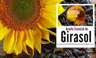 El aceite de girasol es uno de los mas populares por su uso en aromaterapia