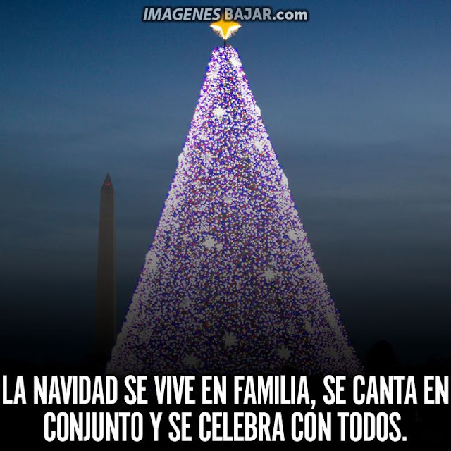 Imágenes de Feliz Navidad para desear Felices Fiestas Bonita tarjeta con árbol navideño con luces y frase