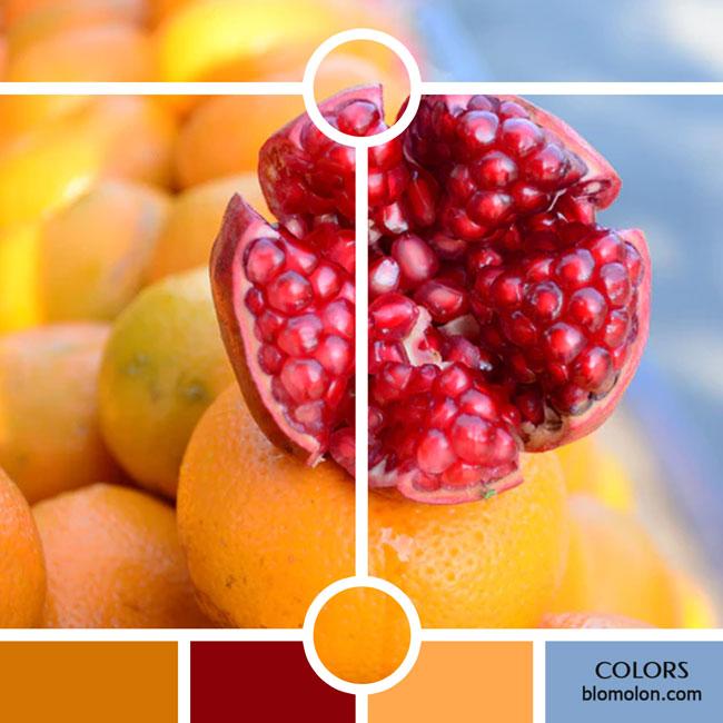 variedad_en_color_color_27
