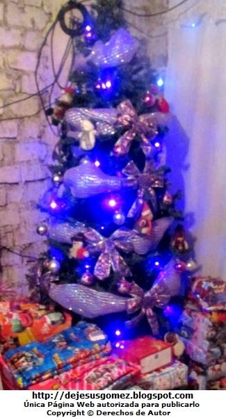 Foto de un ábol de Navidad con luces por Jesus Gómez