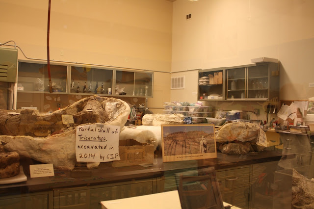 Paleontology lab at Dinosaur Discovery Museum