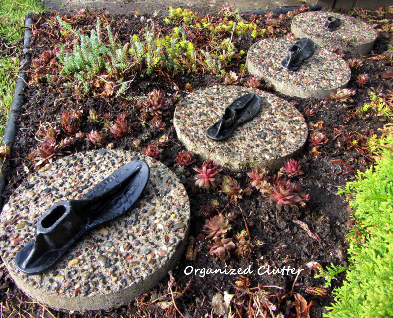 Stepping Stones & Iron Shoe Forms in the Succulent Garden www.organizedcluttedqueen.blogspot.com