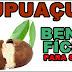 Benefícios do Cupuaçu para saúde, cabelo e pele