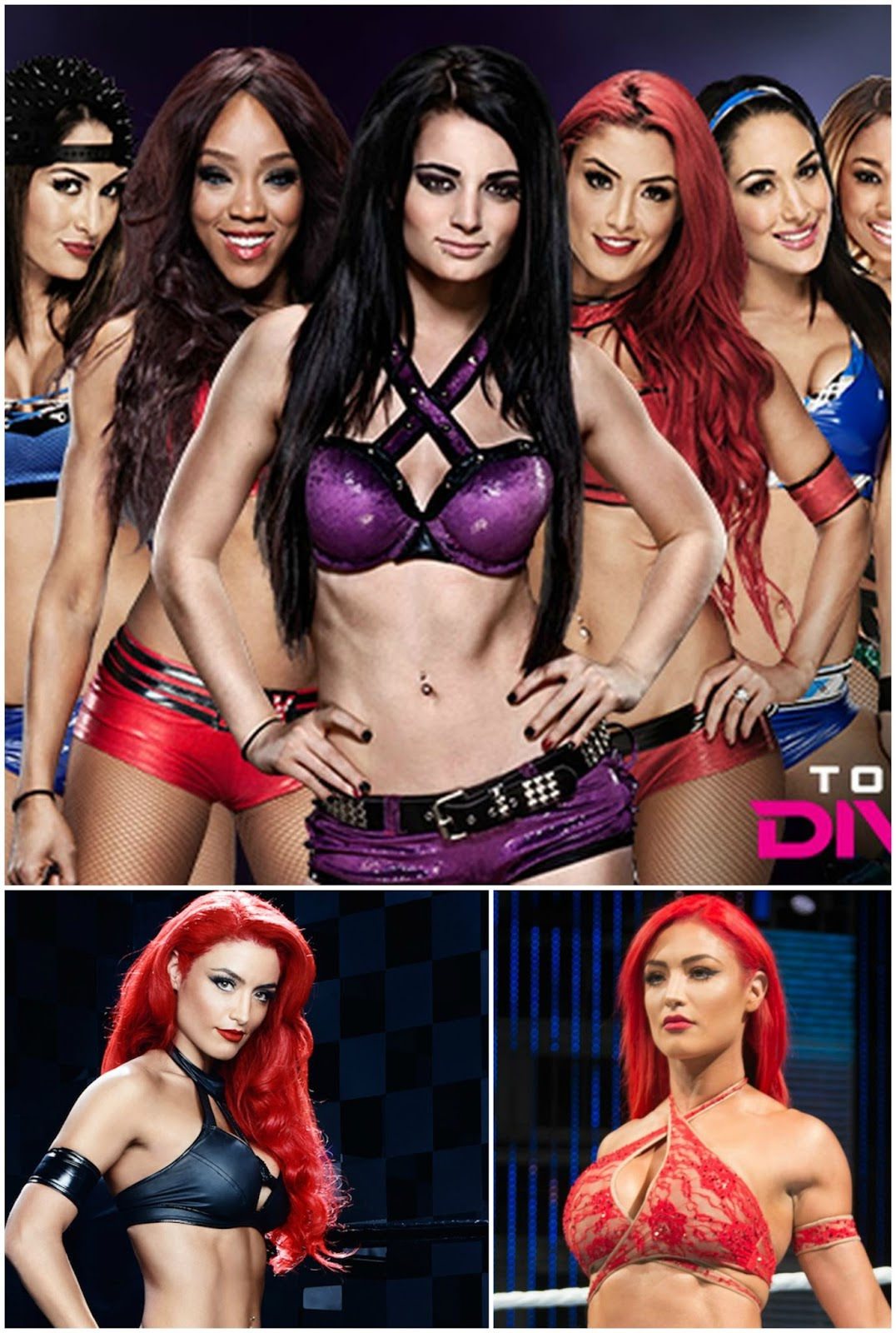 Sexy Warriors Total Divas Total Sexy And Strong-5542
