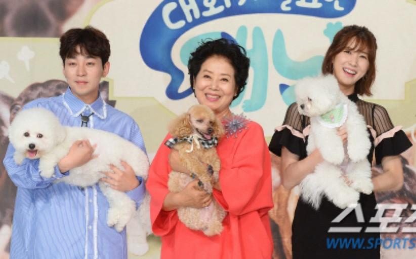 已完結韓綜節目 需要對話的狗貓線上看