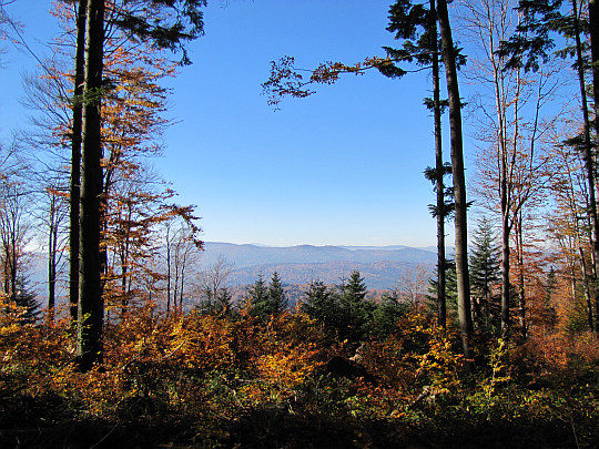Panorama z Koziego Żebra na zachód.