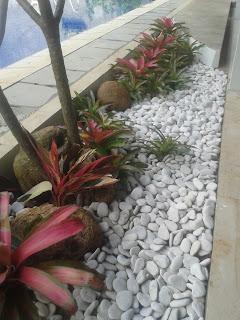 Tukang Taman Kering | Jasa Pembuatan Taman Kering Di Jakarta