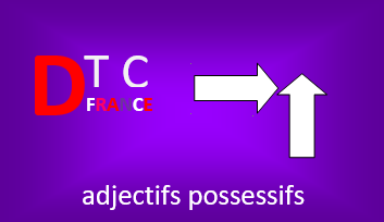 French possessive adjectives (adjectifs possessifs) with examples