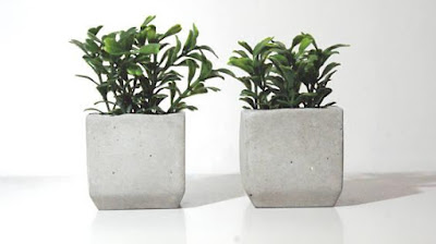 Artificial Plants with Concrete Planter