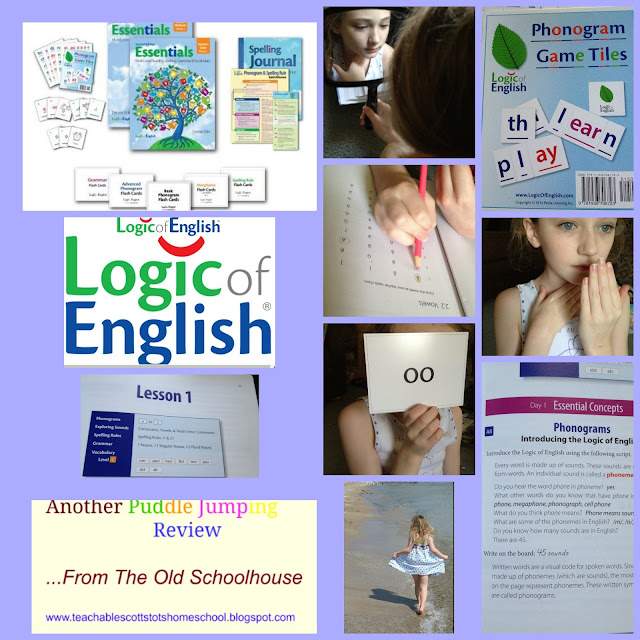 #hsreviews #phonics #spelling #strugglingreaders, phonics, reading, spelling, high-frequency words, struggling readers, homeschool reading curriculum, homeschool spelling curriculum, sight words