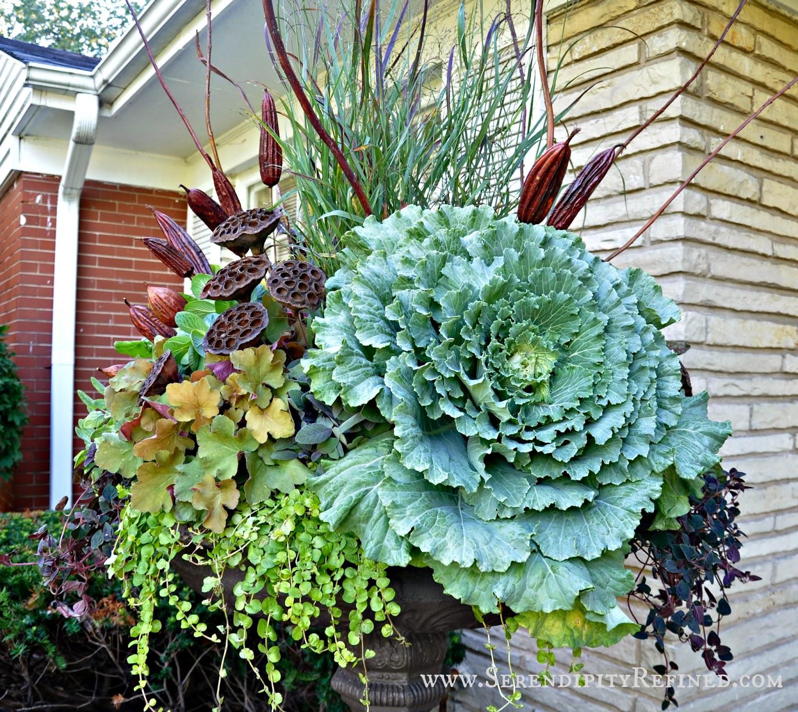 Outside Plant Pots Uk. railing planters deck flower boxes outdoor ...