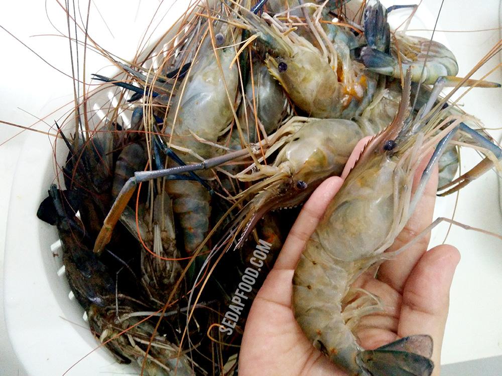 resipi udang galah resepi bergambar Resepi Udang Galah Azie Kitchen Enak dan Mudah