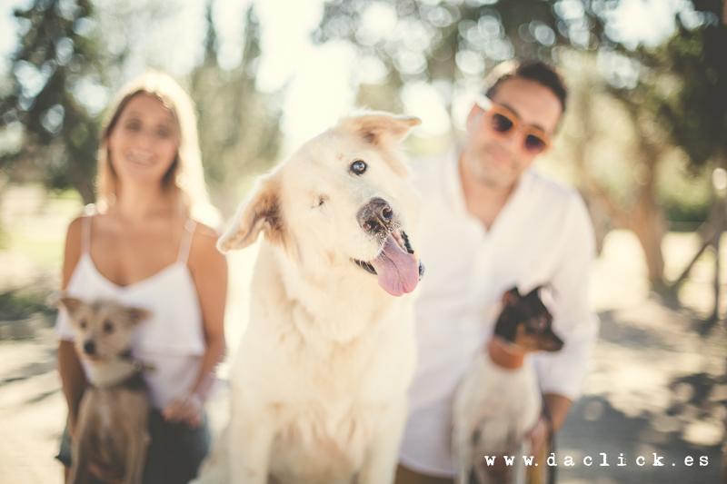 Preboda de Oscar y Raquel en el Clot de Galvany con sus mascotas