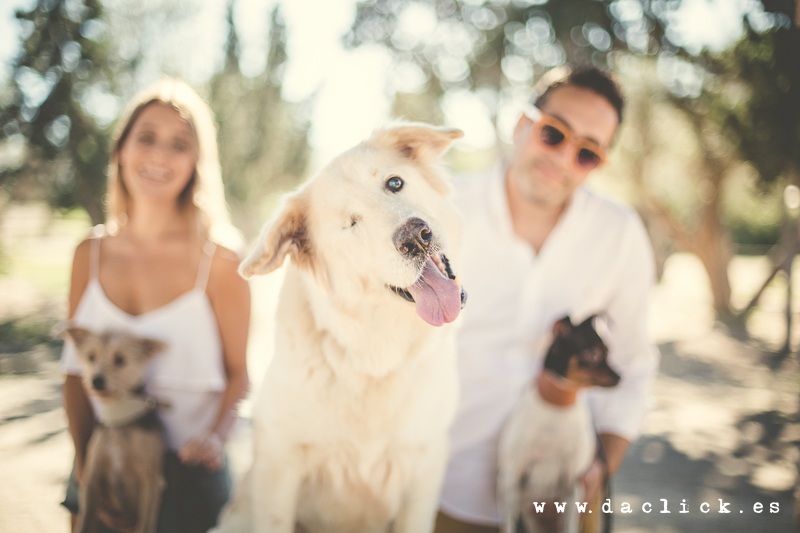 pareja tras perro guiñando un ojo