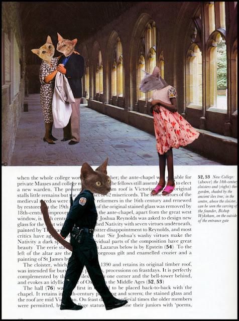 Cat collage by Claudia Mazzie-Ballheim