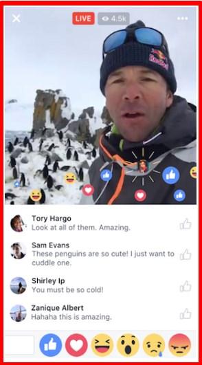 facebook live download