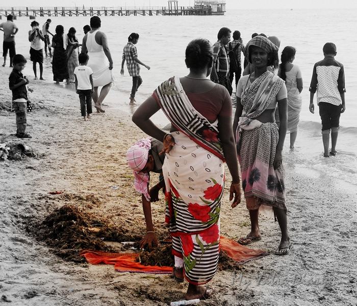 Women Cleaners at the Rameshwaram Agni Teertham