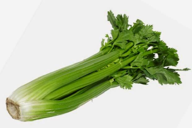 daun daunan apotik hidup untuk herbal daun celery