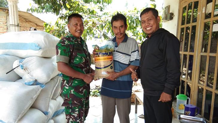 Babinsa Bersama PPL Dampingi Pendistribusian Subsidi Benih Padi Kepada Petani