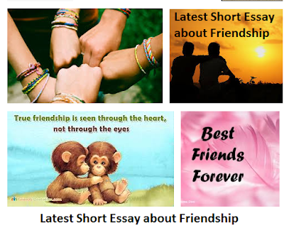short essay on true friendship I can honestly say she is a true friend  not many people can sit here and write an essay about their true friends, because the next day.