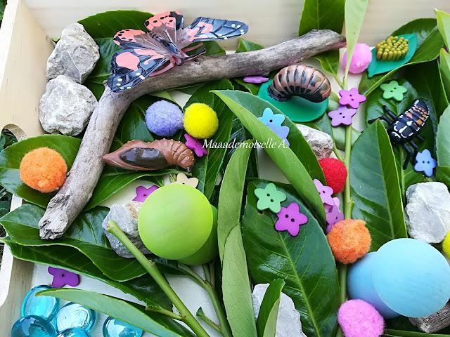 || Plateau sensoriel : Papillons et coccinelles