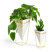Plant Vase With Geometric Container