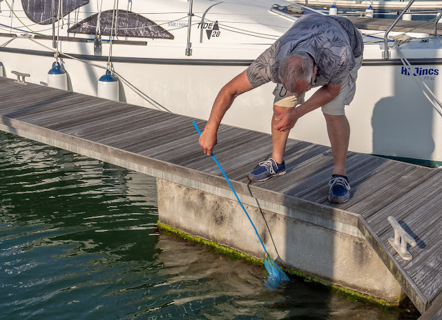 Photo of Phil catching shrimps in Maryport Marina