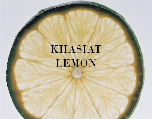 khasiat lemon dan kebaikannya dengan lebih mendalam