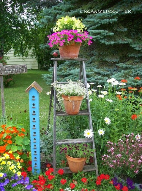 Adding Vertical Interest to the Flower Garden www.organizedclutter.net