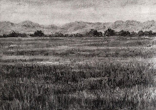 A charcoal pencil and willow charcoal drawing of a landscape by Manju Panchal