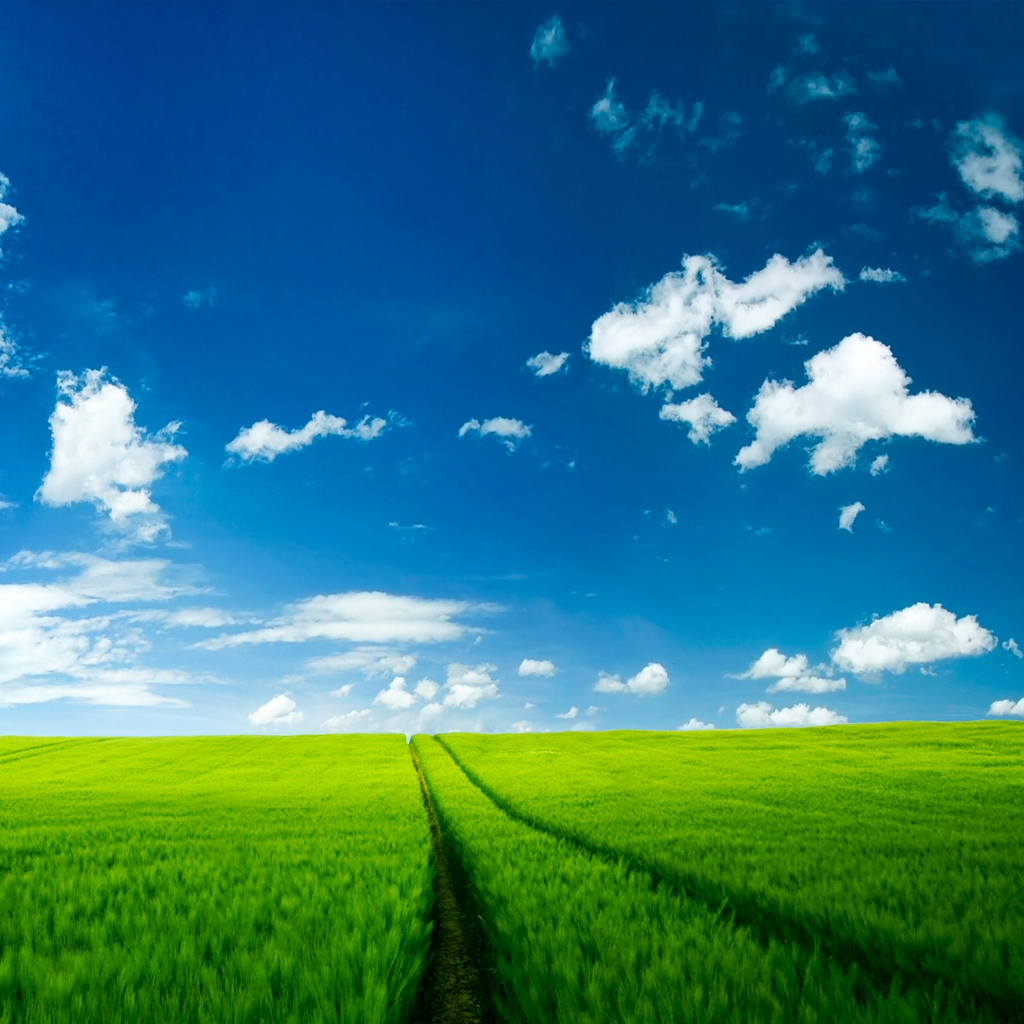 Green Field Ipad Wallpaper | Free iPad Retina HD Wallpapers