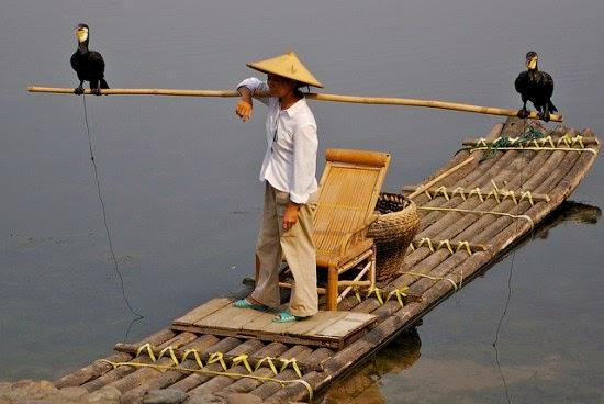 gambar cara unik memancing ikan dengan burung