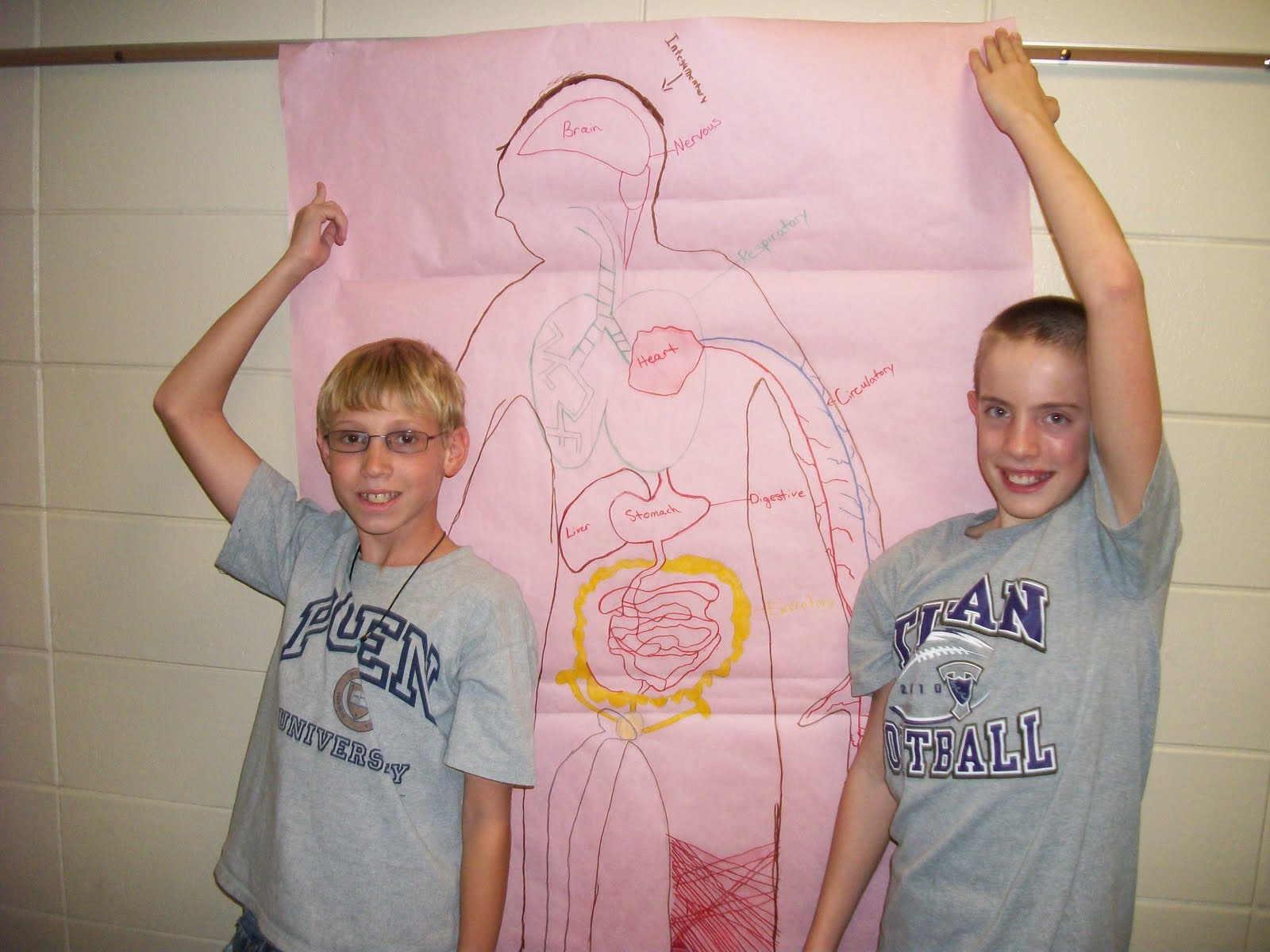 Human Body System 7th Grade