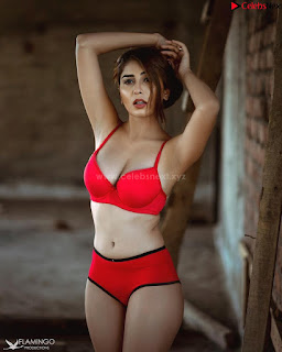 Ruma Sharma in Beautiful sizzling Red .xyz Exclusive Pics